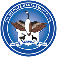 Wildlife Management Group